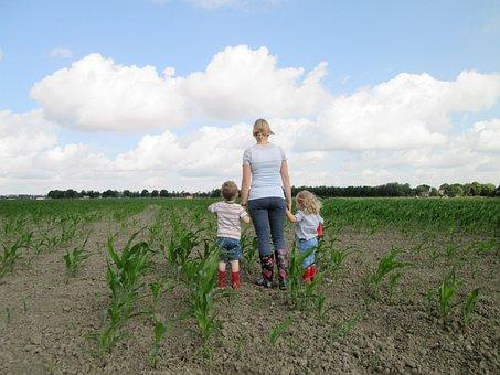 Field, Children, Agricultural, Corn, Outdoor