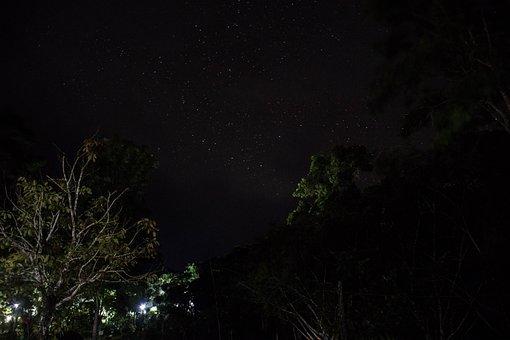 The Star, Nature, The Night, Sky, Galaxy, Star Light