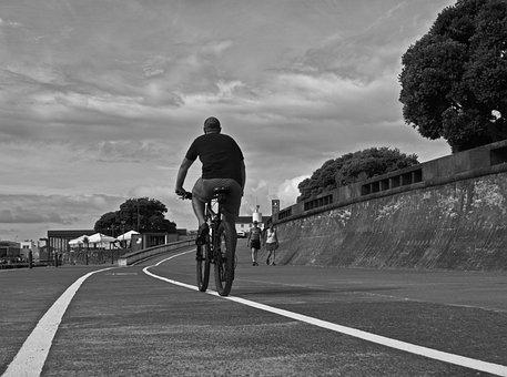 Path, Two Wheels, Cyclist, Asphalt