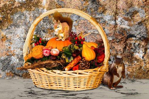 Time Of Year, Autumn, Autumn Beginning, Basket, Fruits