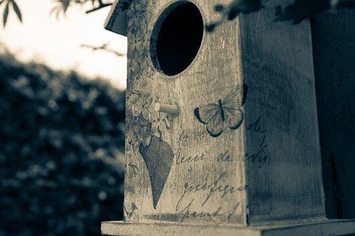 Birdhouse, Birds Nest, Split Tone, Wood, House, Bird