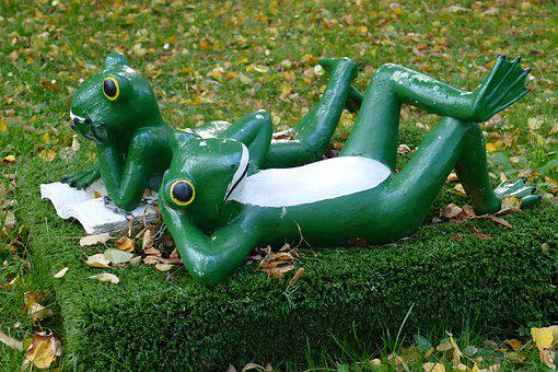 Frog, Frogs, Pair, Lying, Dormant, Relax, Cute, Figure