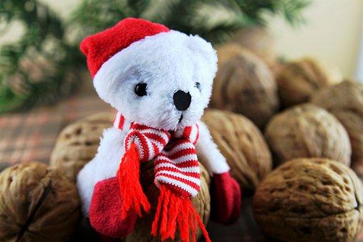 Nuts, Christmas Decoration, Walnut, Merry Christmas