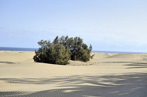 Gran Canaria, The Sand Dunes, Ocean