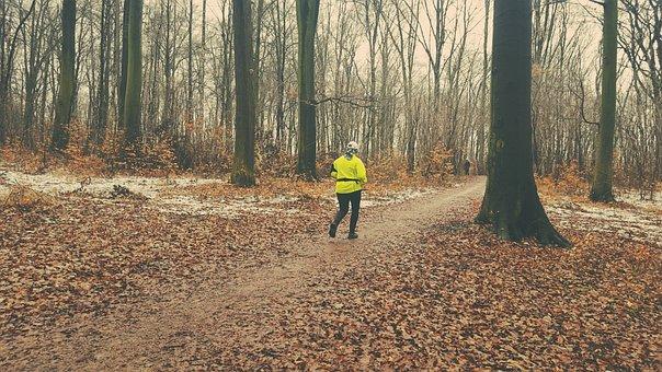 Gear, Trekking, Forest, Training, Konary, Spacer