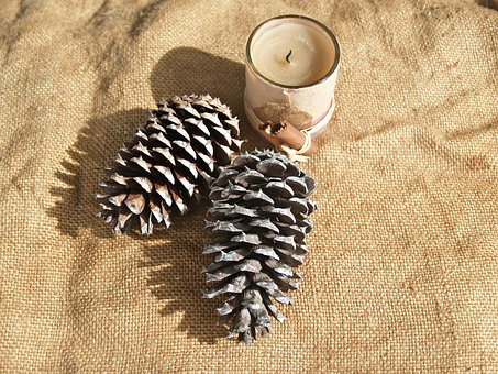 Pine Cone, Pine Cones, Candle, Rough, Prickly, Hessian