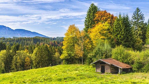 Hut, Alpine, Mountains, Bavaria, Trees, Autumn
