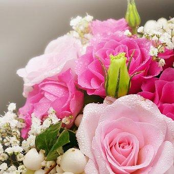 Still Life, Roses, Wedding, Romance, Flowers, Berries