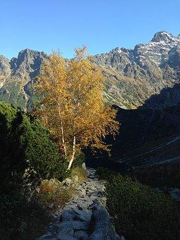 Tatry, Autumn, Mountains, Poland, The High Tatras