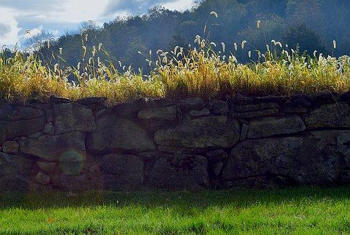 Morning, Stone Wall, Sunlight, Stone, Wall, Summer