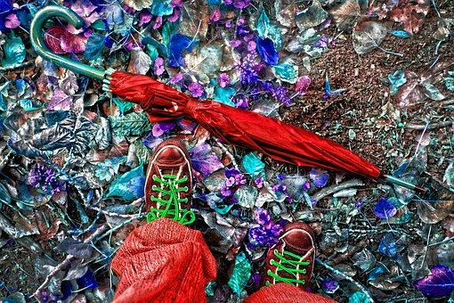 Umbrella, Feet, Shoes, Sneakers, Walking, Leaves, Woman