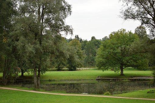 Landscape, Pond, Nature, Water, Tree, Lake, Green