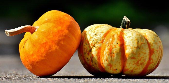 Pumpkins, Colorful, Autumn, Decoration