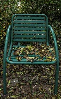 Fall Foliage, Chair, Garden Chair, Leaves, Autumn