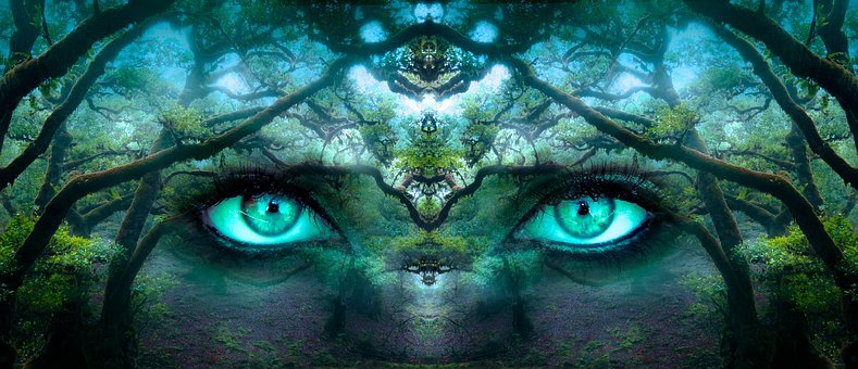 Fantasy, Eyes, Forest, Aesthetic, Face, Portrait