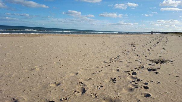 Beach, Tracks, Footprints, Shore, Coast, Coastline, Sea