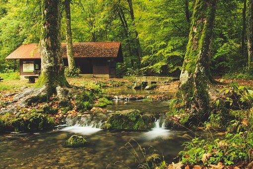 Bach Leek, Forest Lodge, Log, Long Exposure, Gloomy