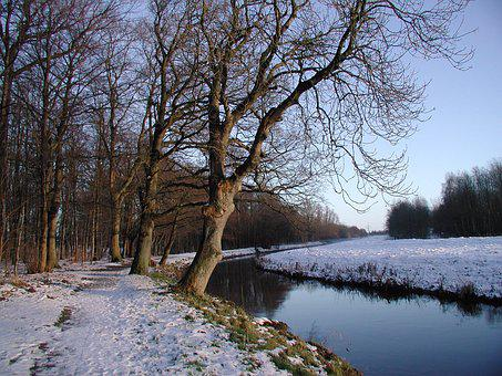 Current, Water, Bank, Landscape, Bach, Mecklenburg