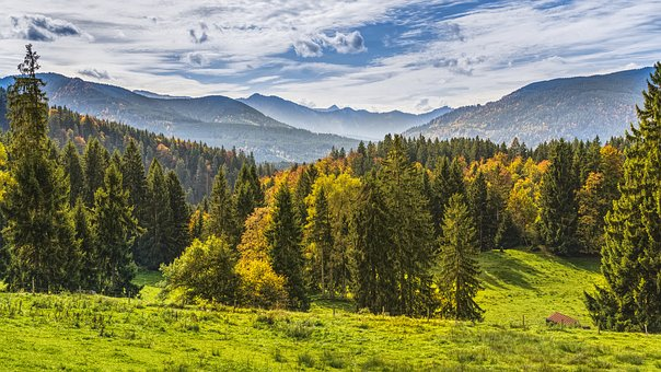 Mountains, View, Forest, Autumn, Alpine, Beautiful