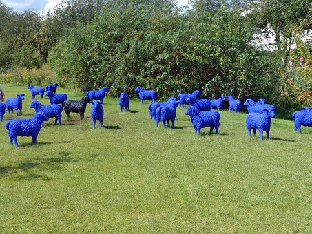 Mecklenburg, Garden, Village, Sheep, Blue, Green