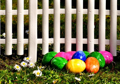 Egg, Colorful, Easter Eggs, Meadow, Fence, Daisy