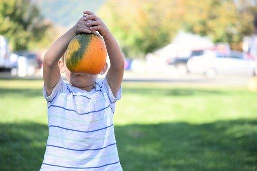 Boy, Pumpkin, Harvest, Festival, Holiday, Halloween