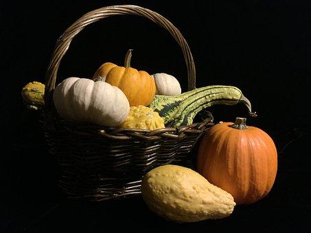 Pumpkin, Gourd, Basket, Still Life, Vegetable, Group