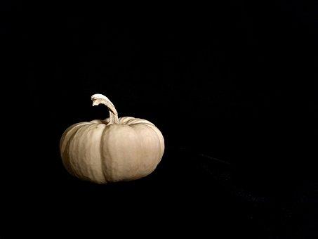 Gourd, White, Pumpkin, Squash, October, November