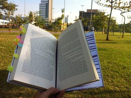 Reading, Park, Book, Loneliness, Sol, Sunday, Read