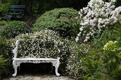 Bank, Park, Rest, Park Bench, Seating Furniture, Garden