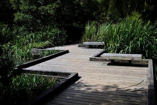 Herman Park, Path Over Creek, Wooden Walkway