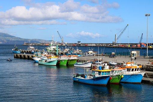 Landscape, Porto, Boat, Fishing, Mar, Industry