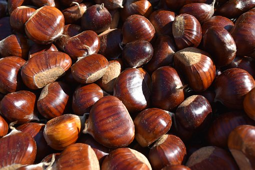 Chestnuts, Chestnut, Tradition, Mountain, Autumn