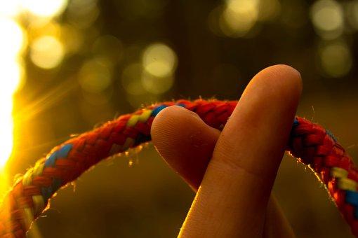 Fingers, Sun, Hand, Summer, Nature, Light, Sunlight