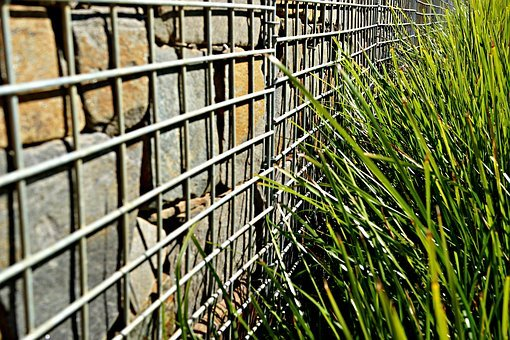 Fenced Wall, Weeds, Protest, Futile, Nature, Ecological