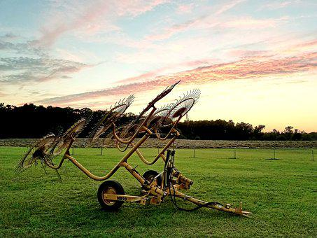 Field, Grass, Farm, Rural, Agriculture, Hayfield