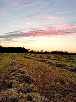 Landscape, Nature, Sky, Field, Outdoors, Agriculture