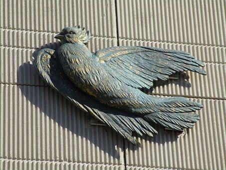 Dove, Animal, Bird, Feather, Plumage, Bird Pigeon