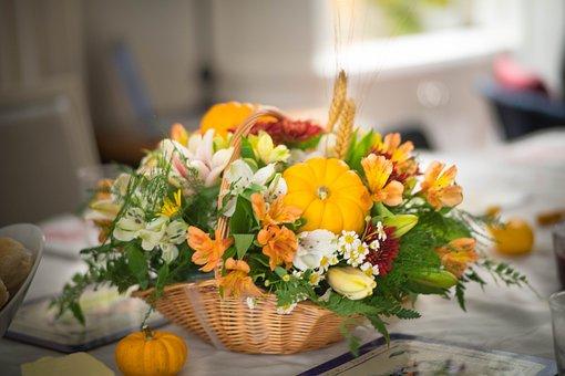 Thanksgiving, Pumpkin, Holiday, Fall, Autumn, Harvest