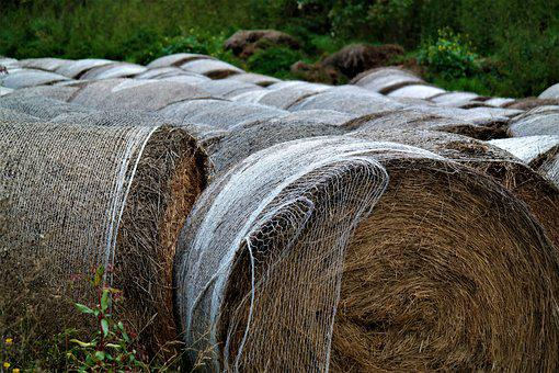 Straw, Bale, Agriculture, Round Bales, Stock