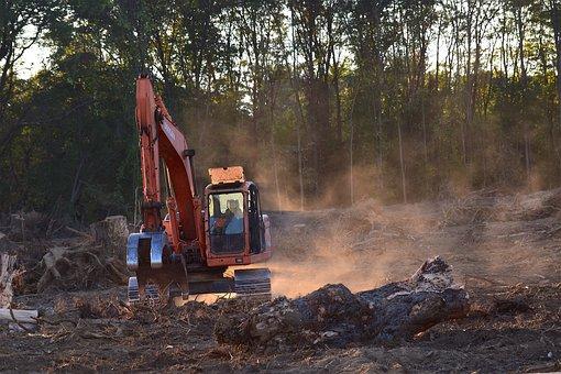 Deforestation, Machine, Truck, Industry, Vehicle