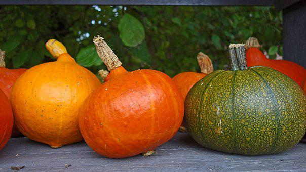 Pumpkins, Autumn Decoration, Ornamental Fruit