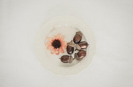 From Above, Acorns, White Space, Fall, Seasonal Icons