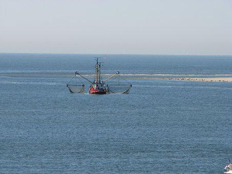 Fishing, Shrimp, North Sea, Cutter, Fishing Boat