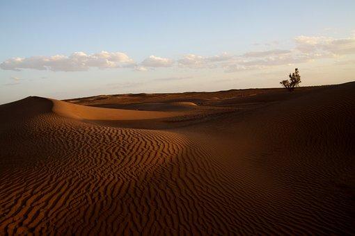 Desert, Morocco, Africa, Sand, Dunes, Nature