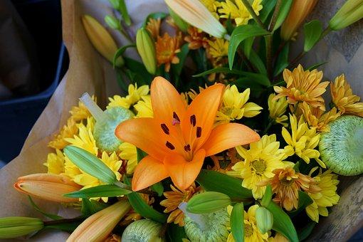 Asiatic Lily, Floral Bouquet, Blossom, Flora