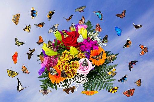 Emotions, Flowers, Butterflies, Bouquet, Fly, Wing