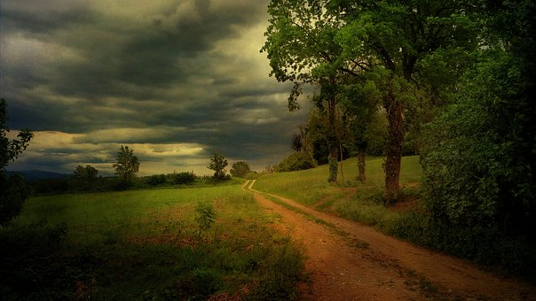 Kerala, Rain, Mansoon, Nature, Green, India, Landscape