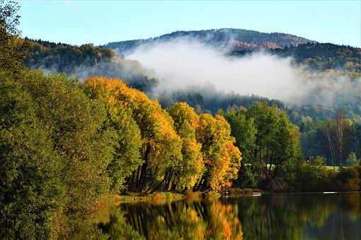 Klaffer, Autumn, Tree, Deciduous Forest, Leaves
