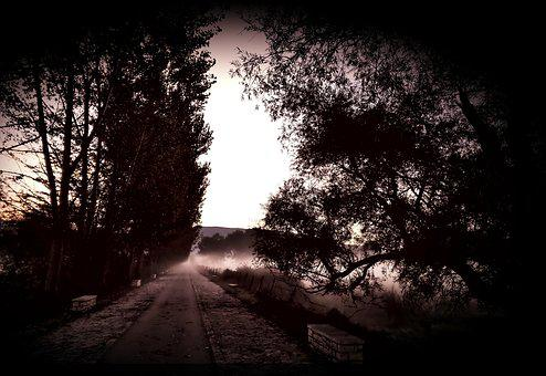 Fog, Dark Landscape, Morning, Scary, Night, Alley